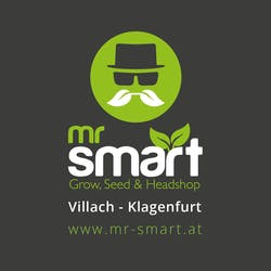 Mr. Smart Klagenfurt
